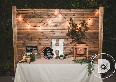 WeddingBackDrops12